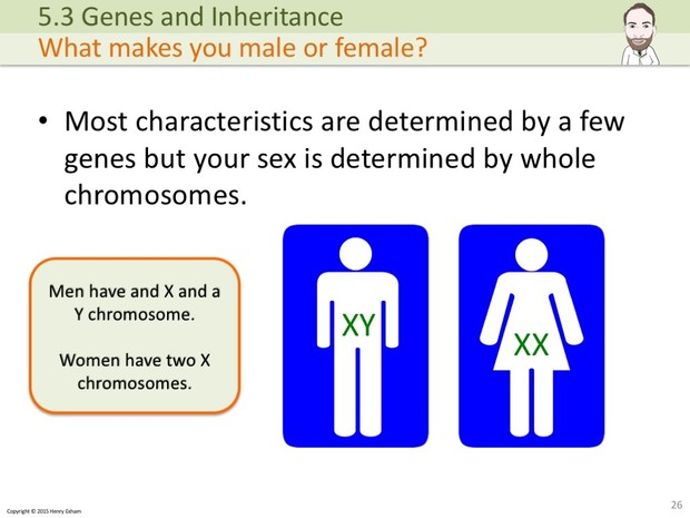 IGCSE Biology - Genes and Inheritance Presentation