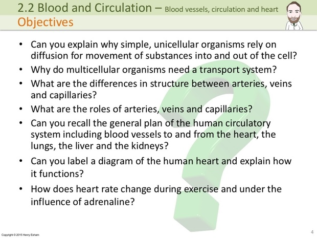 IGCSE Biology - Blood Vessels, Circulation and the Heart Presentation
