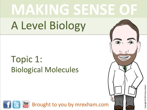 A Level Biology - Biological Molecules Presentation