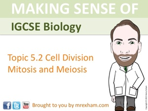 IGCSE Biology - Mitosis and Meiosis Presentation