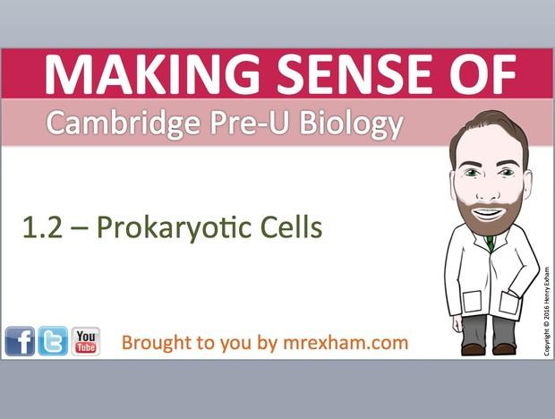 Cambridge Pre-U Biology - 1.2 Prokaryotic Cells Presentation
