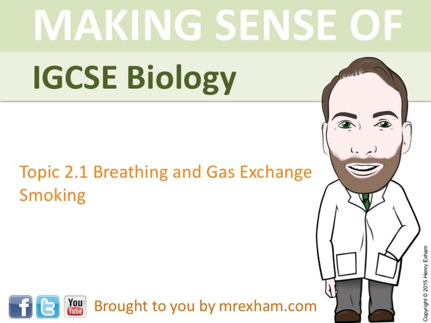 IGCSE Biology - The Lungs, Gas Exchange and Smoking Presentation