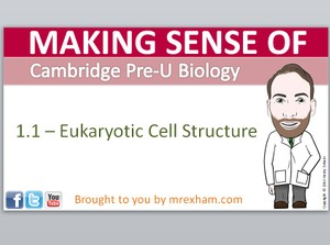 Cambridge Pre-U Biology - 1.1 Eukaryotic Cell Structure Presentation