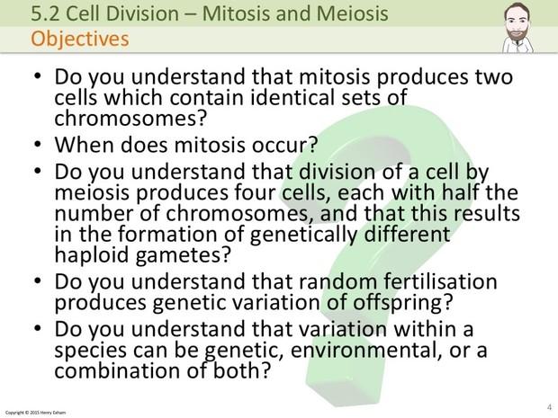 IGCSE Biology - Mitosis and Meiosis Presentation