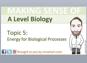 A Level Biology - Energy for Biological Processes Presentation