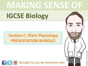 IGCSE Biology - Plant Physiology Presentation Bundle