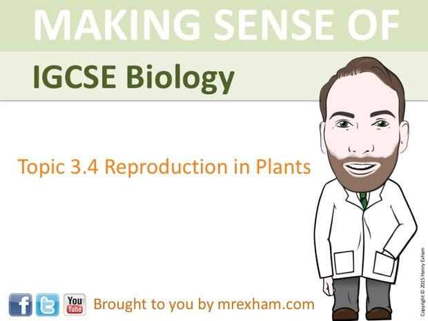 IGCSE Biology - Plant Reproduction Presentation