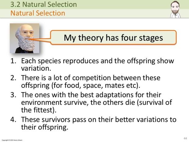 A Level Biology - Classification and Biodiversity Presentation