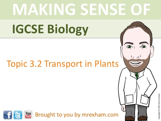 IGCSE Biology - Plant Transport Presentation