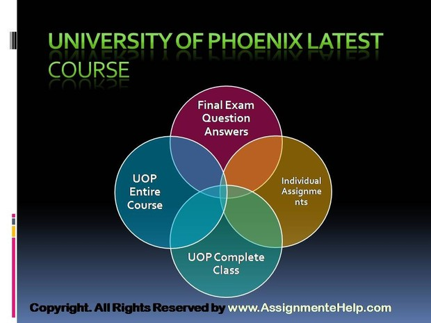 UOP Complete Course Tutorials ACC 290 Week 1 Financial Statements Paper