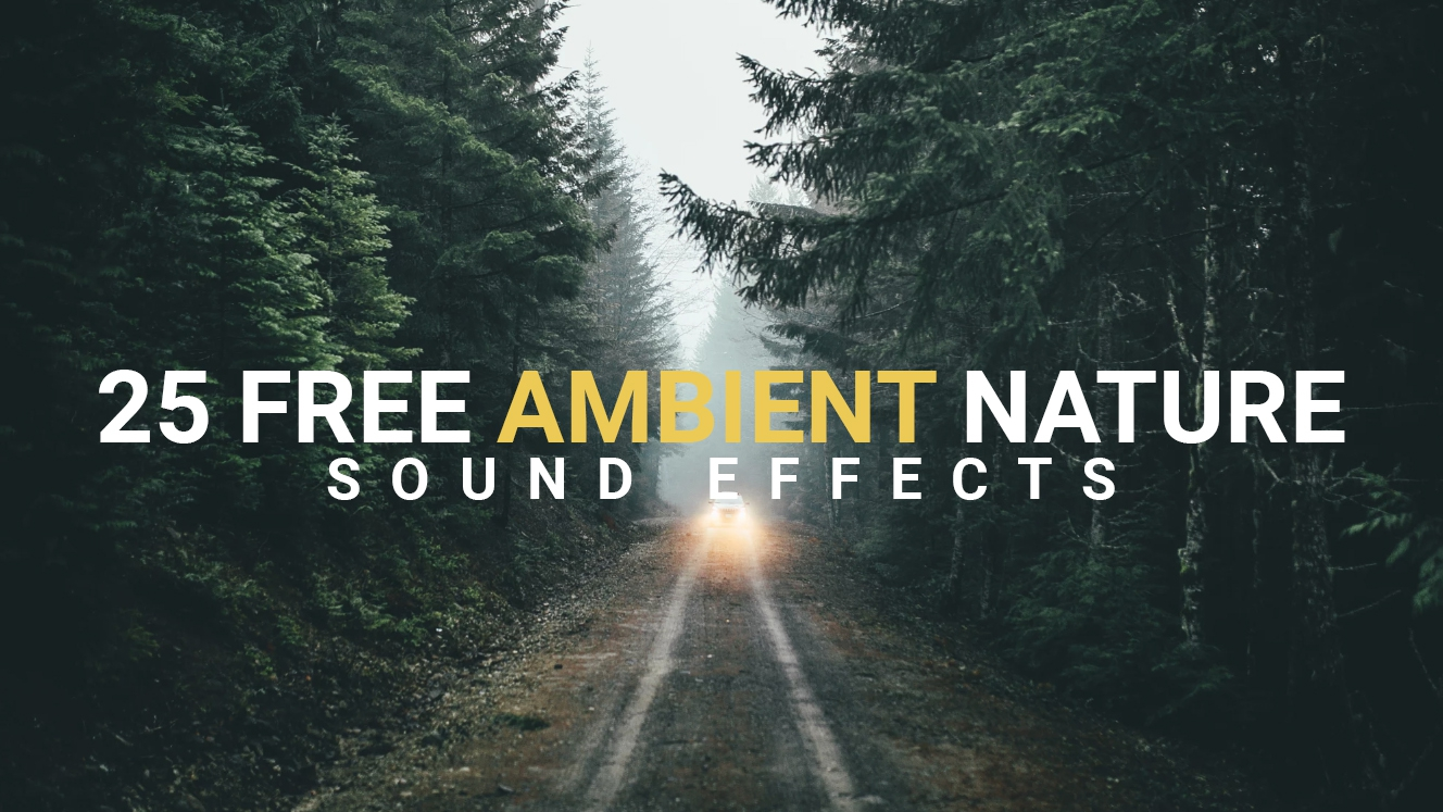 25+ Ambient Nature Sound Effects