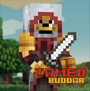 Minecraft World Profile Picture w/ opt. Name Tag