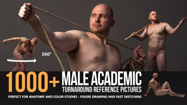 1000+ Male Academic Turnaround Reference Pictures