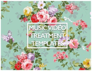 Music Video Treatment TEMPLATES!