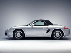 Porsche WIS Boxter & Cayman (987) 2008-2009