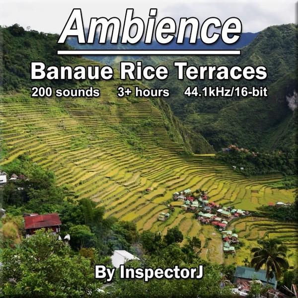 Ambience - Banaue Rice Terraces