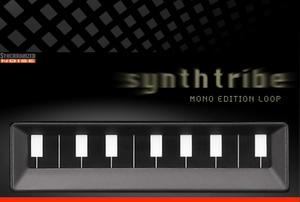 Synthtribe