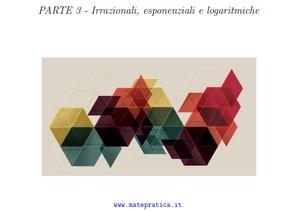 Studi di irrazionali, esponenziali e logaritmiche