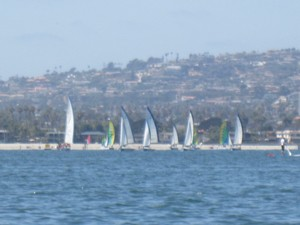 Harbor Sail San Diego