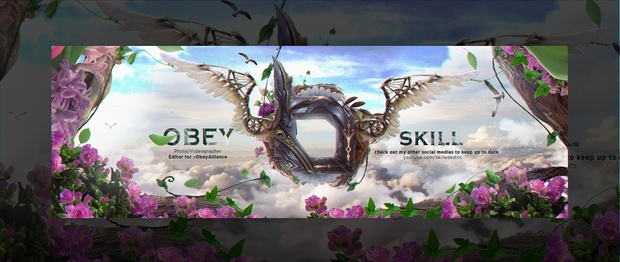 Header for Obey Skill   Template PSD