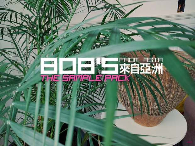 808's from Asia: The Sample Pack