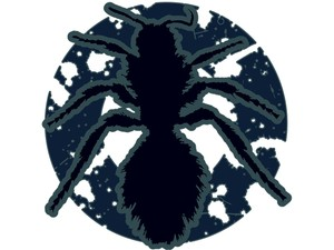T-shirt Design Image - The Ant In Blue