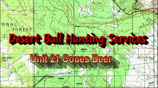 Unit 21 Coues Deer