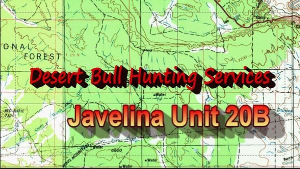 Unit 20B Javelina