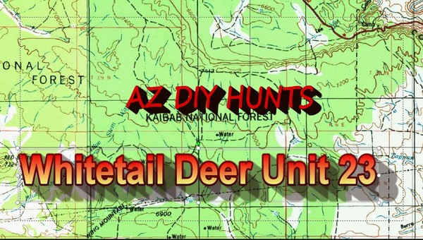 Unit 23 Whitetailed Deer