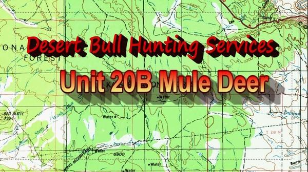 Unit 20B Mule Deer