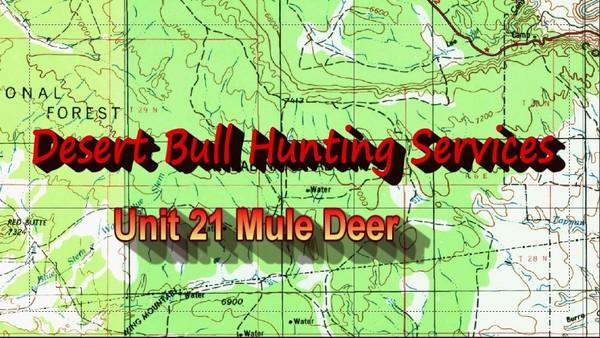 Unit 21 Mule Deer