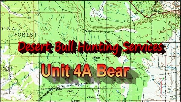 Unit 4A Bear