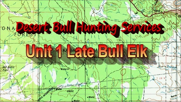 Unit 1 Late Bull Elk
