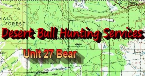 Unit 27 Bear