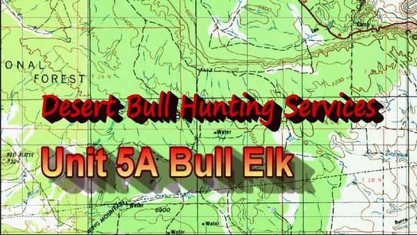 Unit 5A Bull Elk