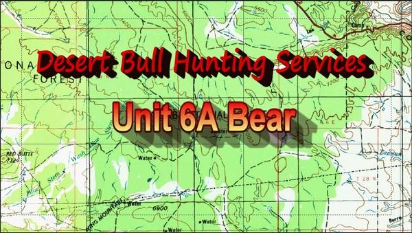 Unit 6A Bear