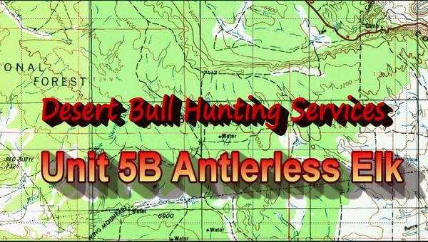 Unit 5B Antlerless Elk