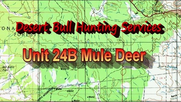Unit 24B Mule Deer