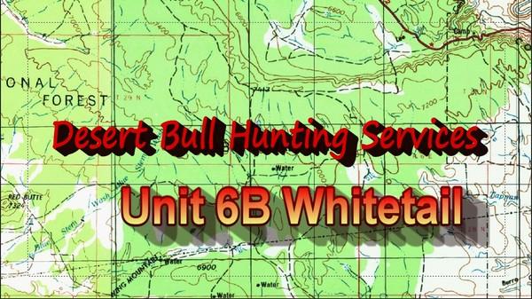 Unit 6B Whitetail Deer