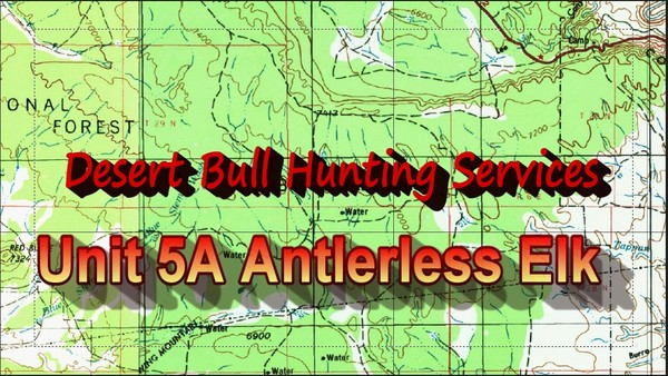 Unit 5A Antlerless Elk