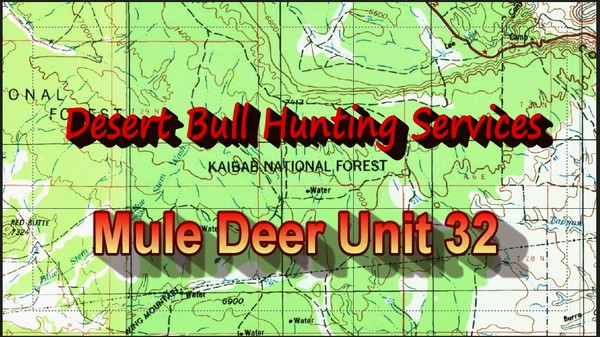 Unit 32 Mule Deer