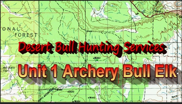 Unit 1 Archery Bull Elk