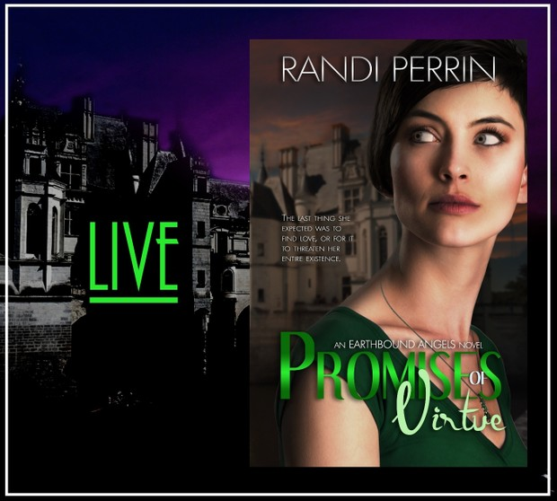 Mobi Promises of Virtue by Randi Perrin
