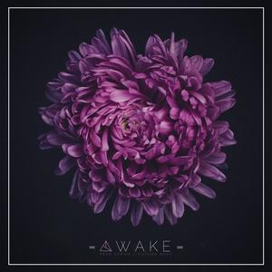 Unmüte Awake