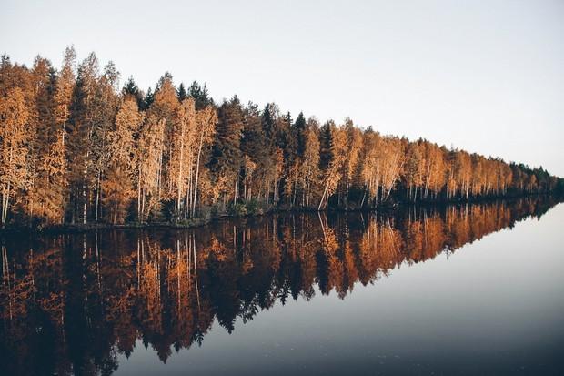 Four Seasons Bundle [Winter/Spring/Summer/Autumn]