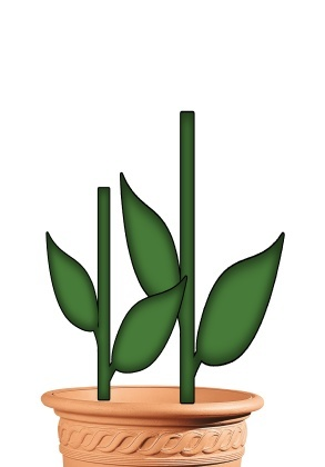 PDF PLANT POT / STEMS