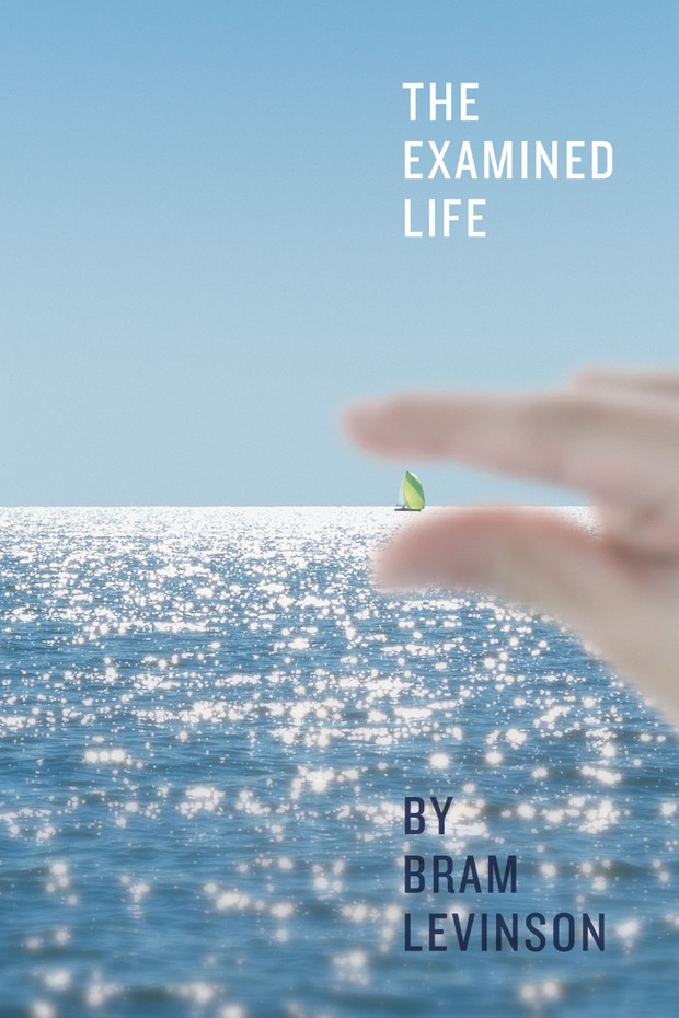 The Examined Life Audiobook (Chapters Divided) by Bram Levinson