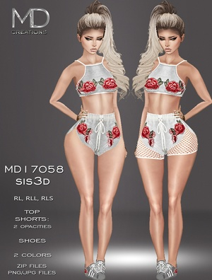 MD17058 - Sis3D - 2 Accounts