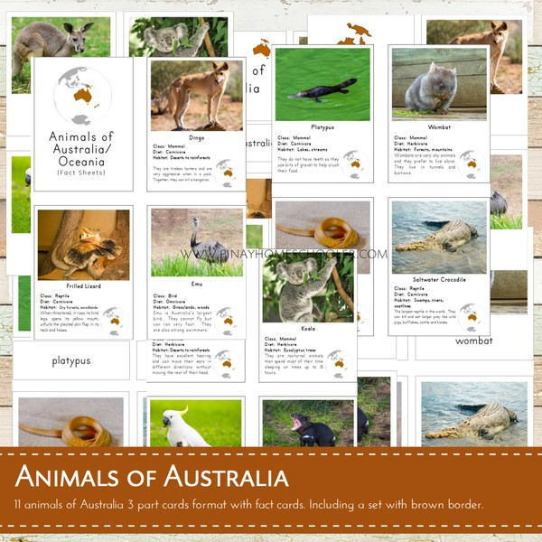 Montessori Animals of Australia / Oceania 3 Part Cards and Fact Sheets