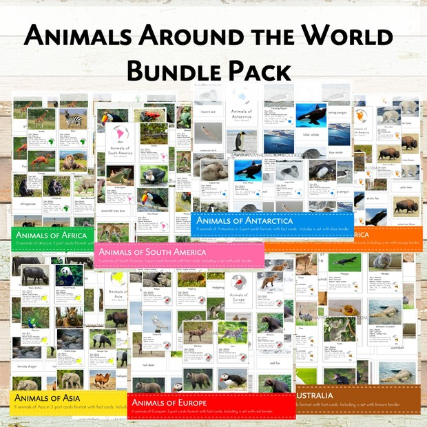 Animals Around the World Bundle
